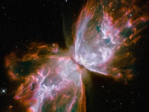 butterfly wings in space